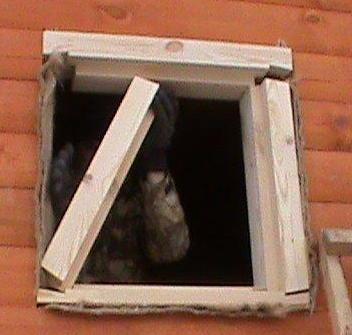 Деревянная обсада своими руками - Обсада и окосячка в деревянном доме